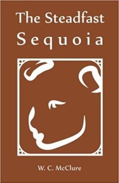 The Steadfast Sequoia